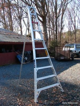 ARbor ladder